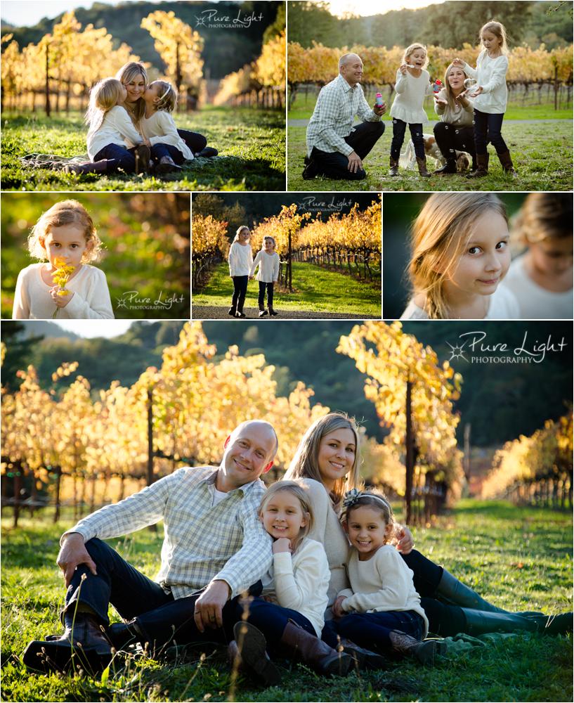 Santa-Rosa-Family-Portrait-Vineyard-Lifestyle