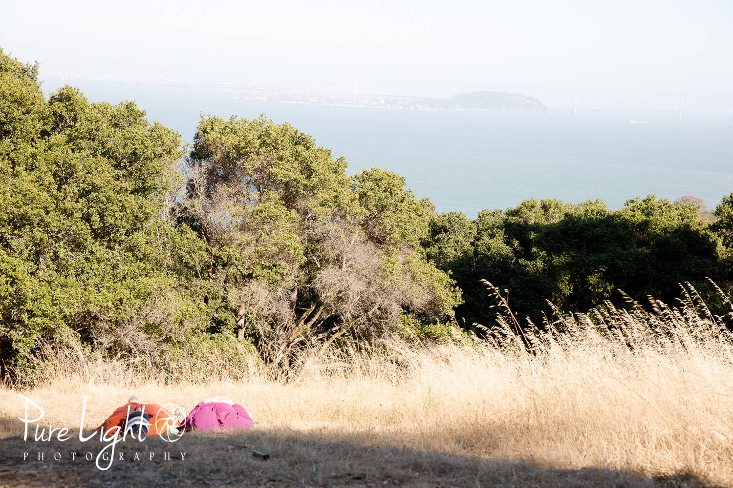 AngelIsland-Web-2